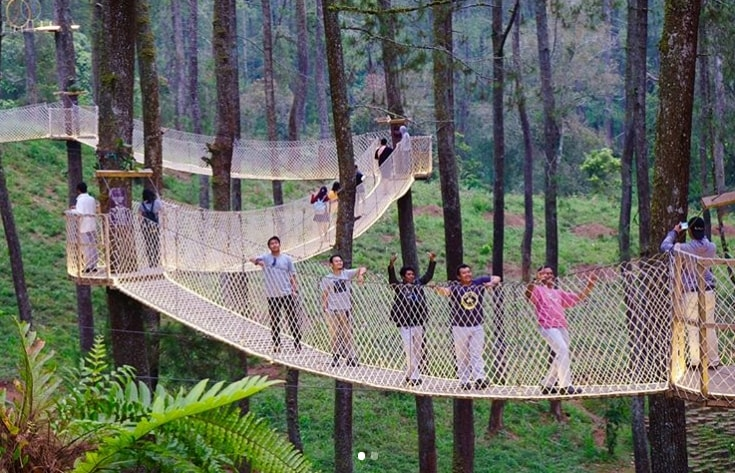 sky bridge orchid forest cikole