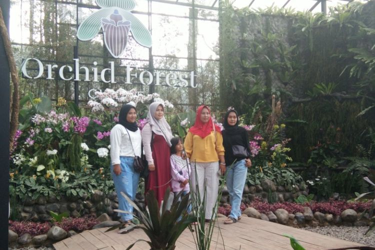 toko orchid forest cikole