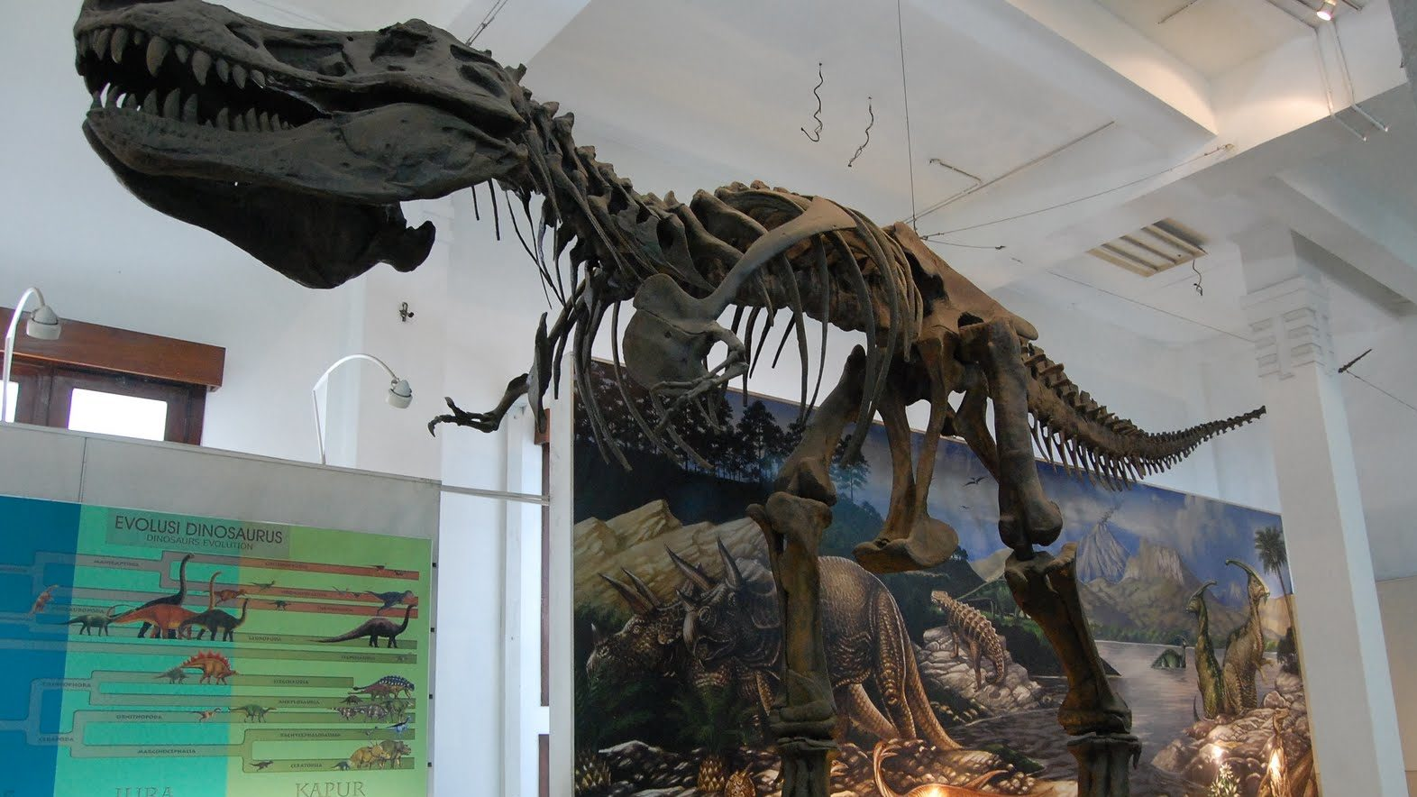 info wisata Museum Geologi Bandung