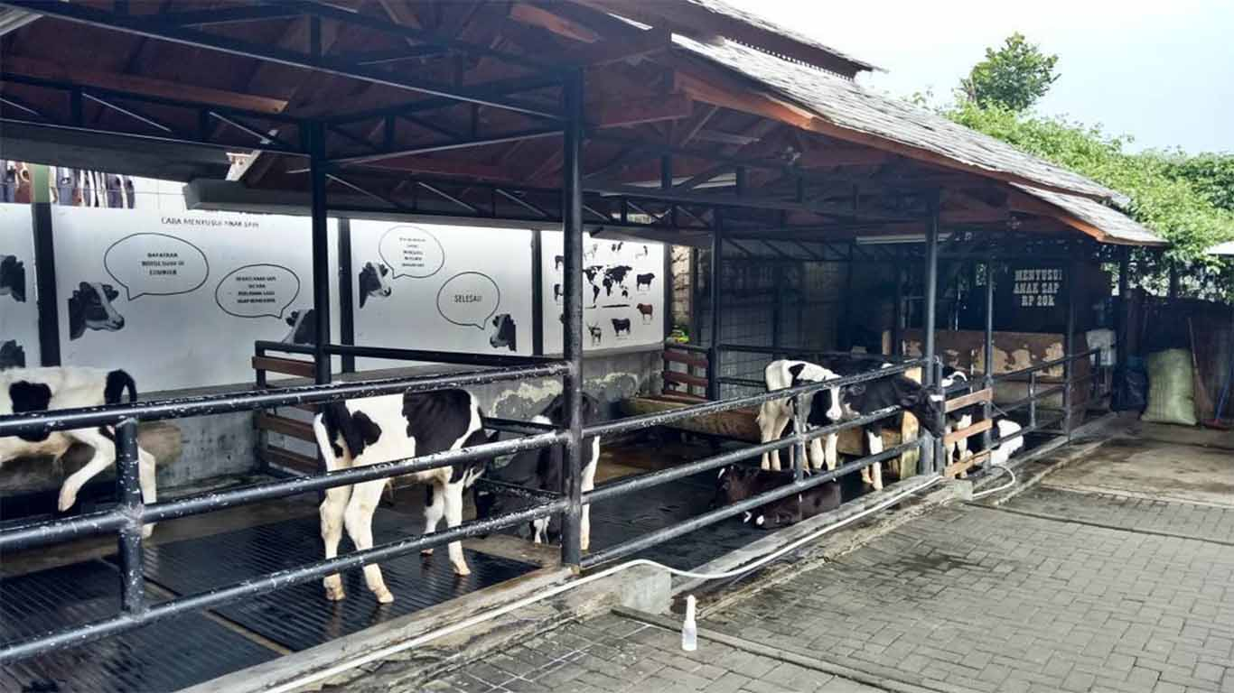 review farmhouse lembang