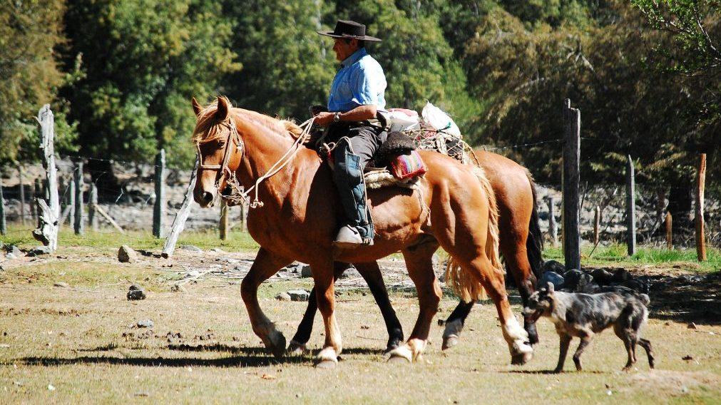 sejarah de ranch