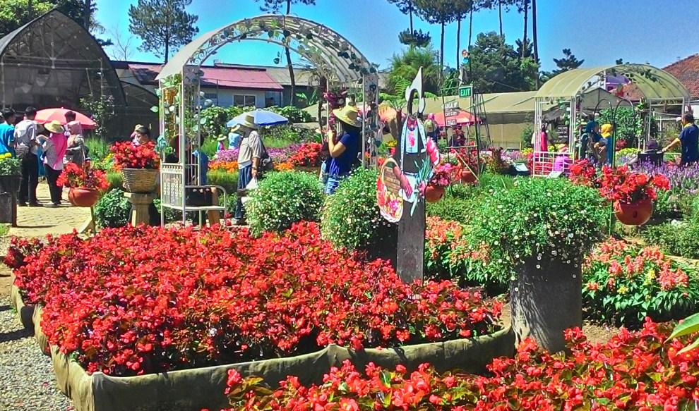 apa itu Taman Bunga Cihideung