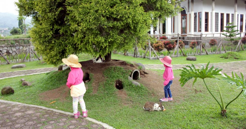 fasilitas taman kelinci ciwidey