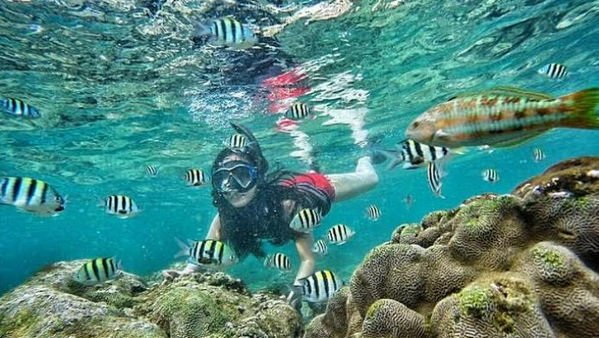 foto bawah air pantai nglambor