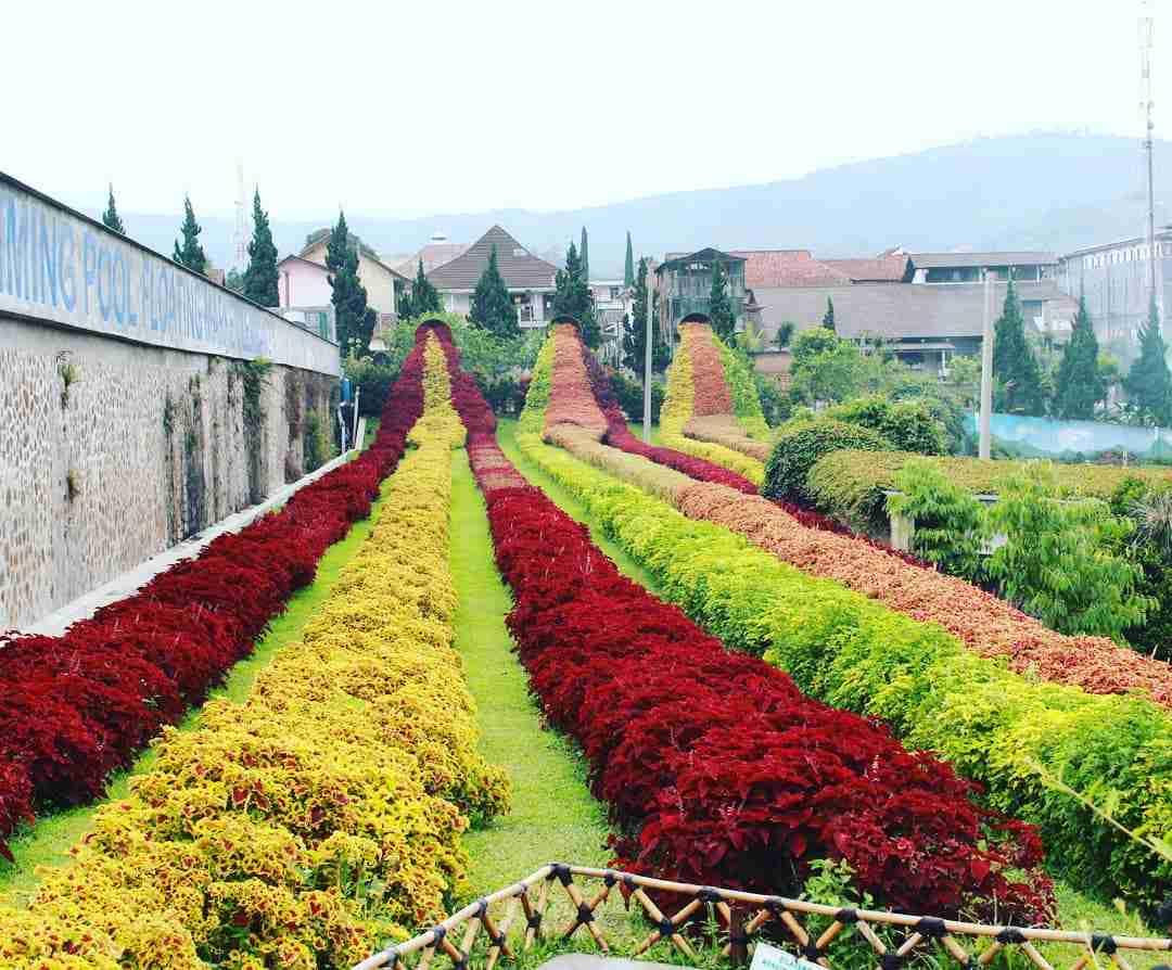gambar Rainbow Garden Lembang