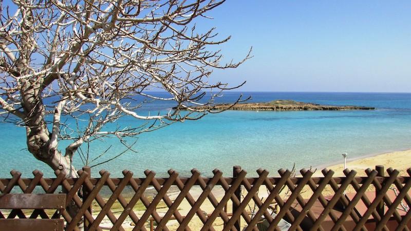 pantai fig tree bay terindah di dunia