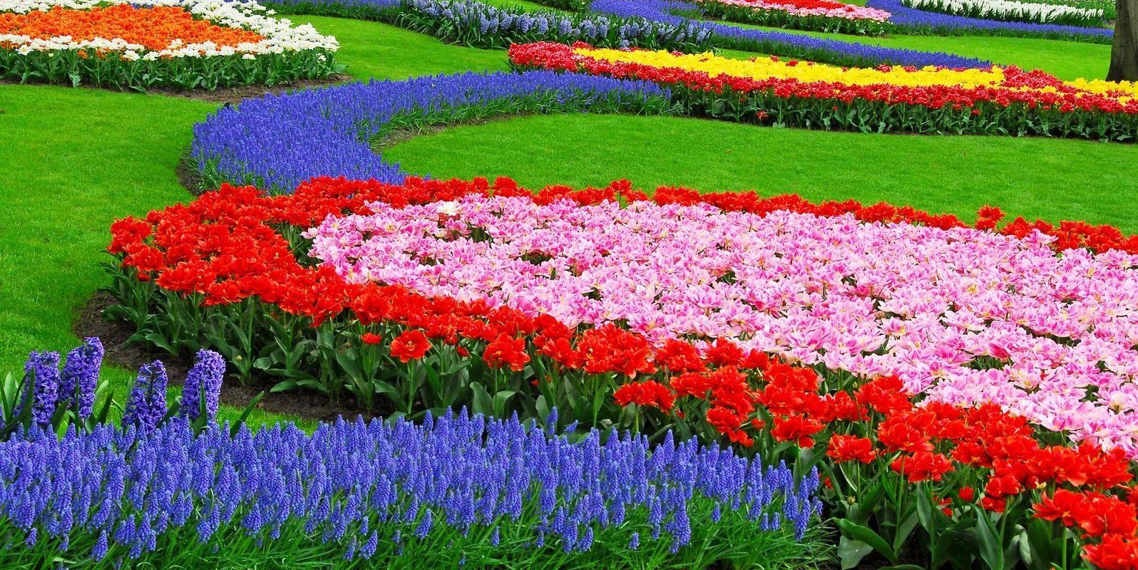 wisata Taman Bunga Cihideung