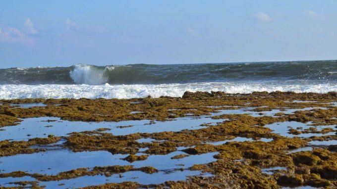 wisata pantai minajaya di sukabumi