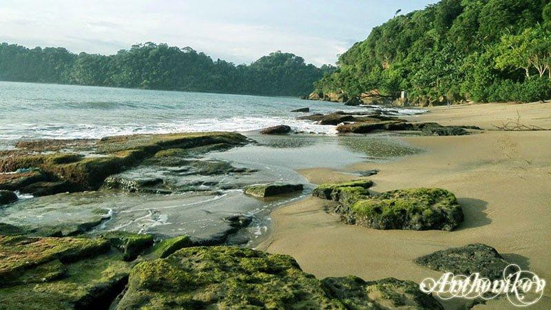 wisata pantai tamban di jatim