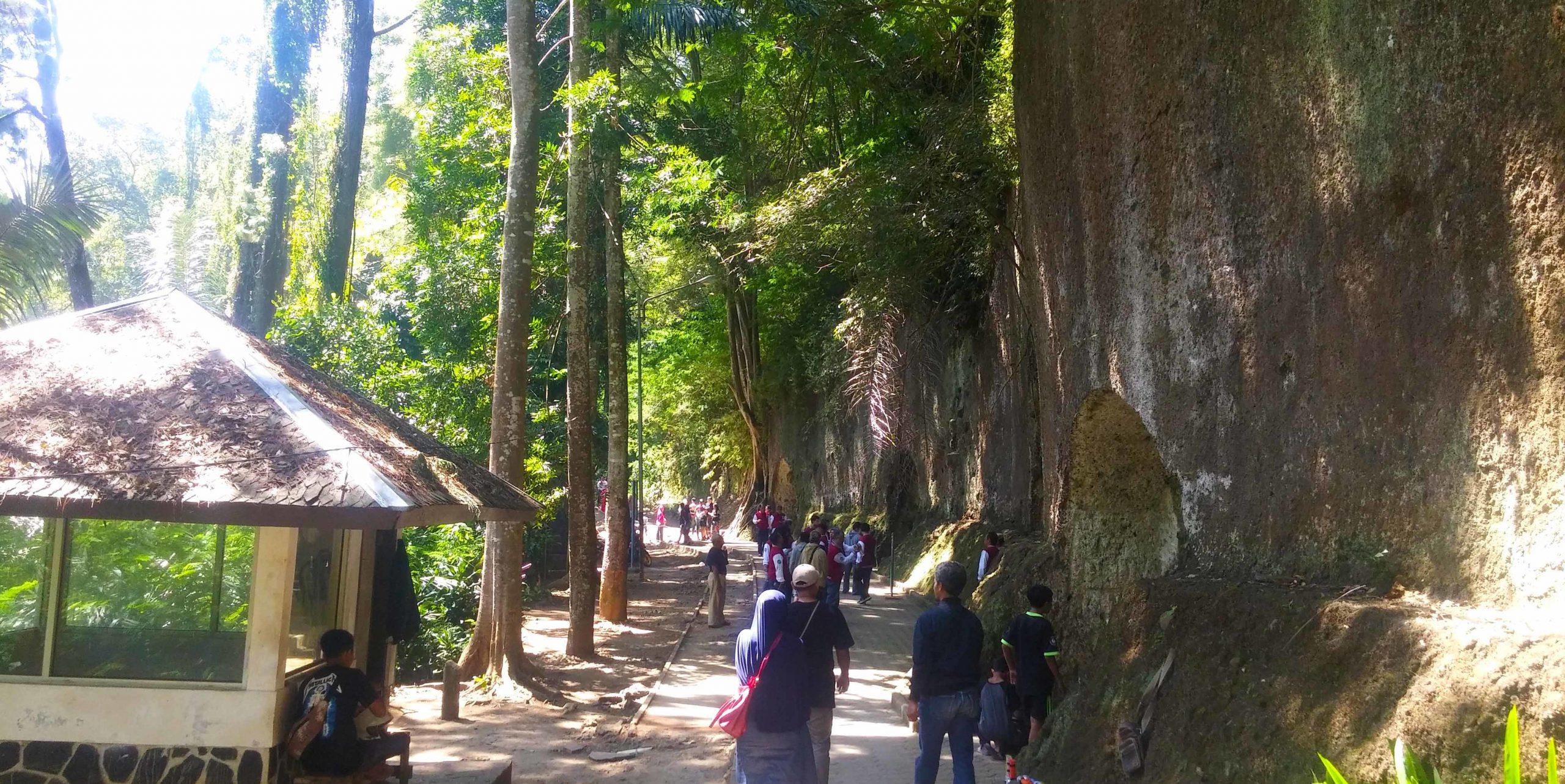 wisata taman hutan raya 1
