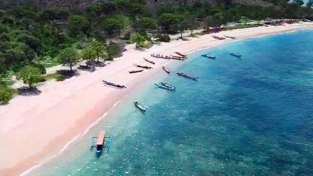 fasilitas wisata pantai pink