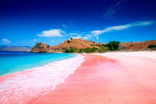 wisata pantai pink di ntb