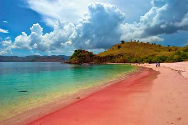 harga tiket pantai pink lombok