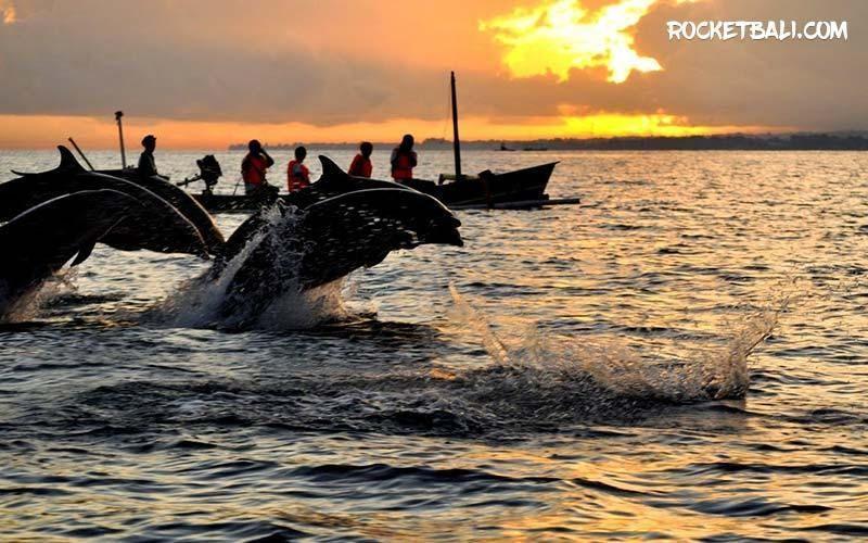 obyek wisata pantai lovina sunrise