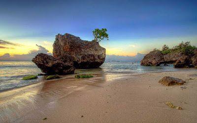 pantai alami pantai padang padang
