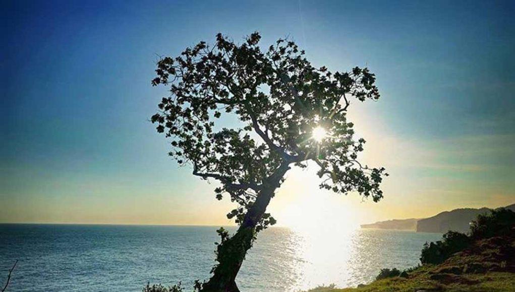 spot wisata terbaik pantai kesirat